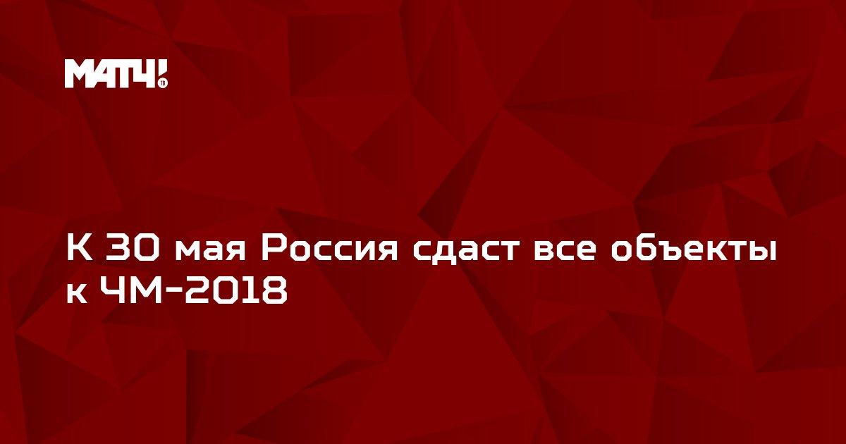 К 30 мая Россия сдаст все объекты к ЧМ-2018