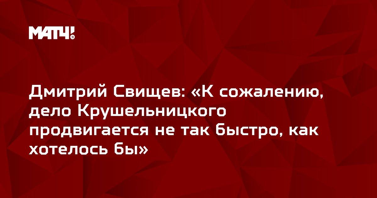Дмитрий Свищев: «К сожалению, дело Крушельницкого продвигается не так быстро, как хотелось бы»