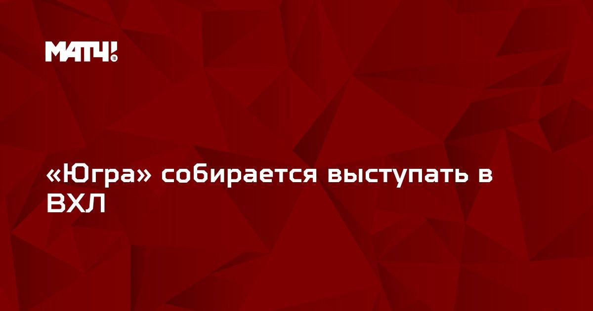 «Югра» собирается выступать в ВХЛ