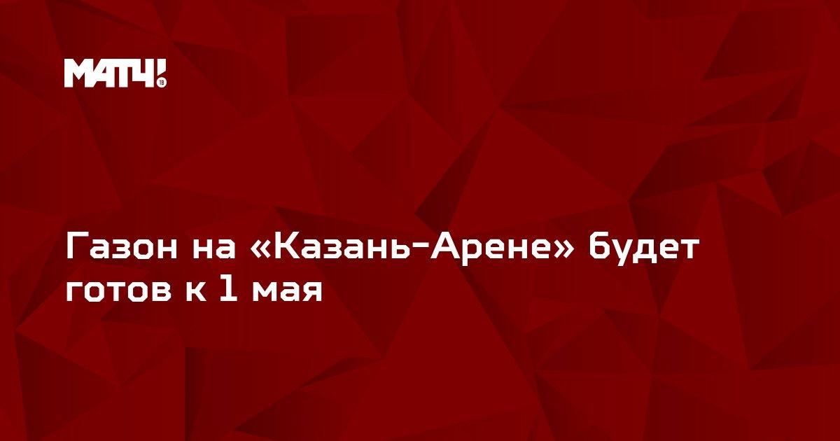 Газон на «Казань-Арене» будет готов к 1 мая