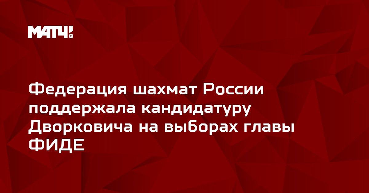 Федерация шахмат России поддержала кандидатуру Дворковича на выборах главы ФИДЕ