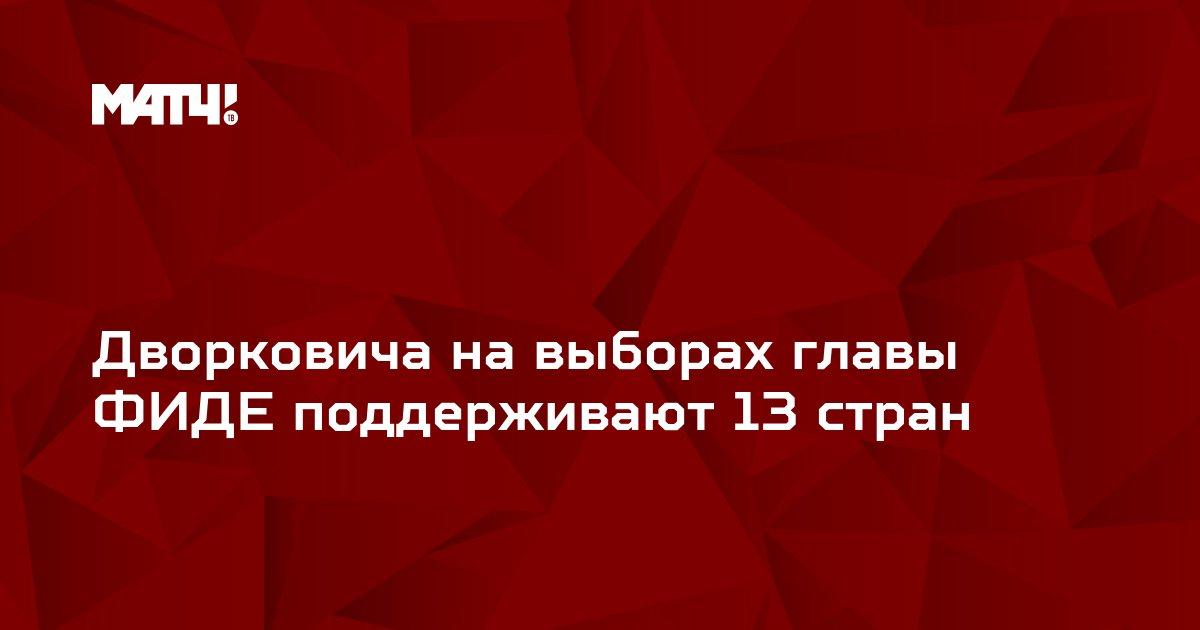 Дворковича на выборах главы ФИДЕ поддерживают 13 стран