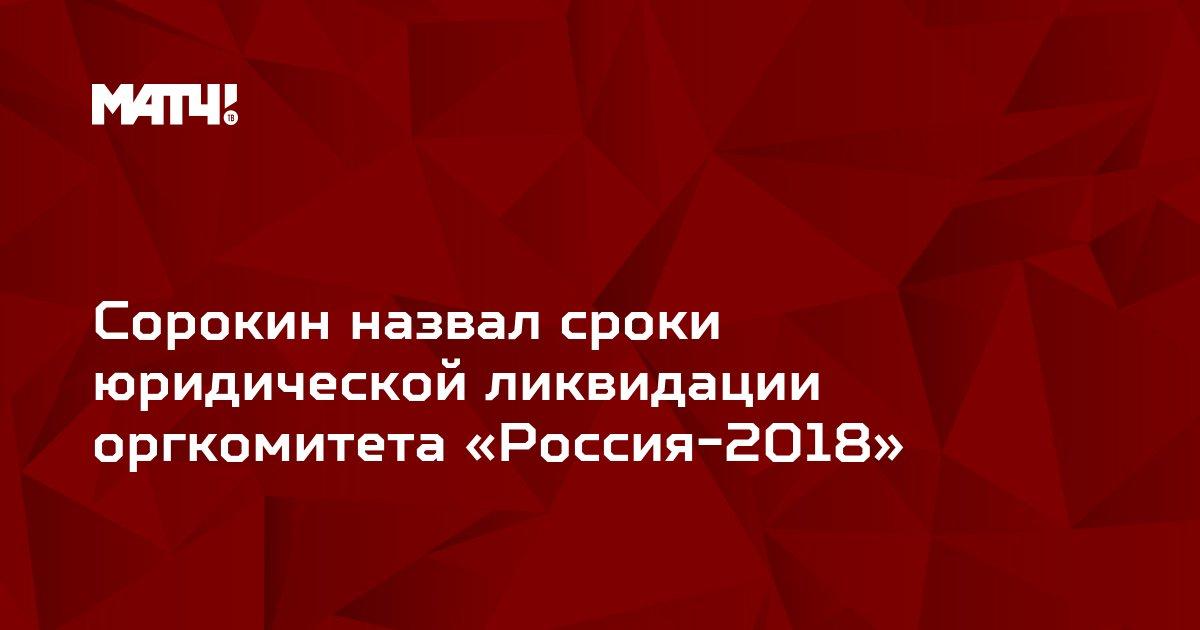 Сорокин назвал сроки юридической ликвидации оргкомитета «Россия-2018»
