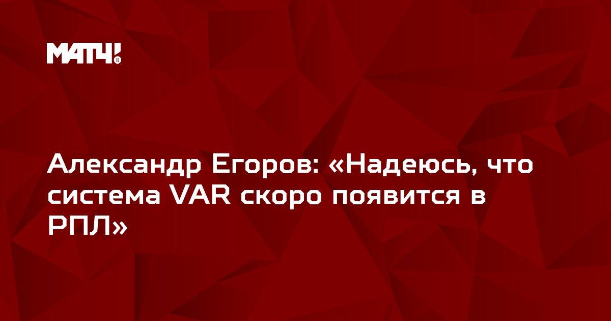 Александр Егоров: «Надеюсь, что система VAR скоро появится в РПЛ»