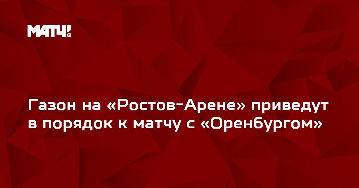 Газон на «Ростов-Арене» приведут в порядок к матчу с «Оренбургом»