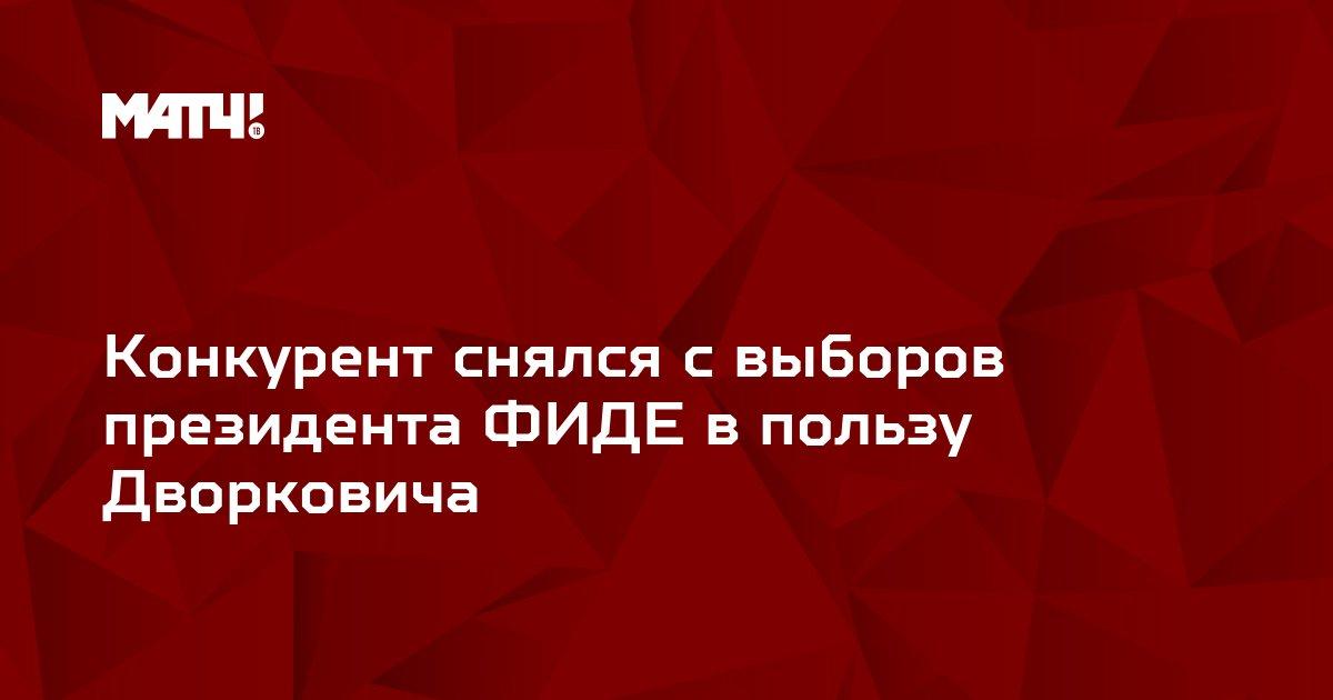 Конкурент снялся с выборов президента ФИДЕ в пользу Дворковича
