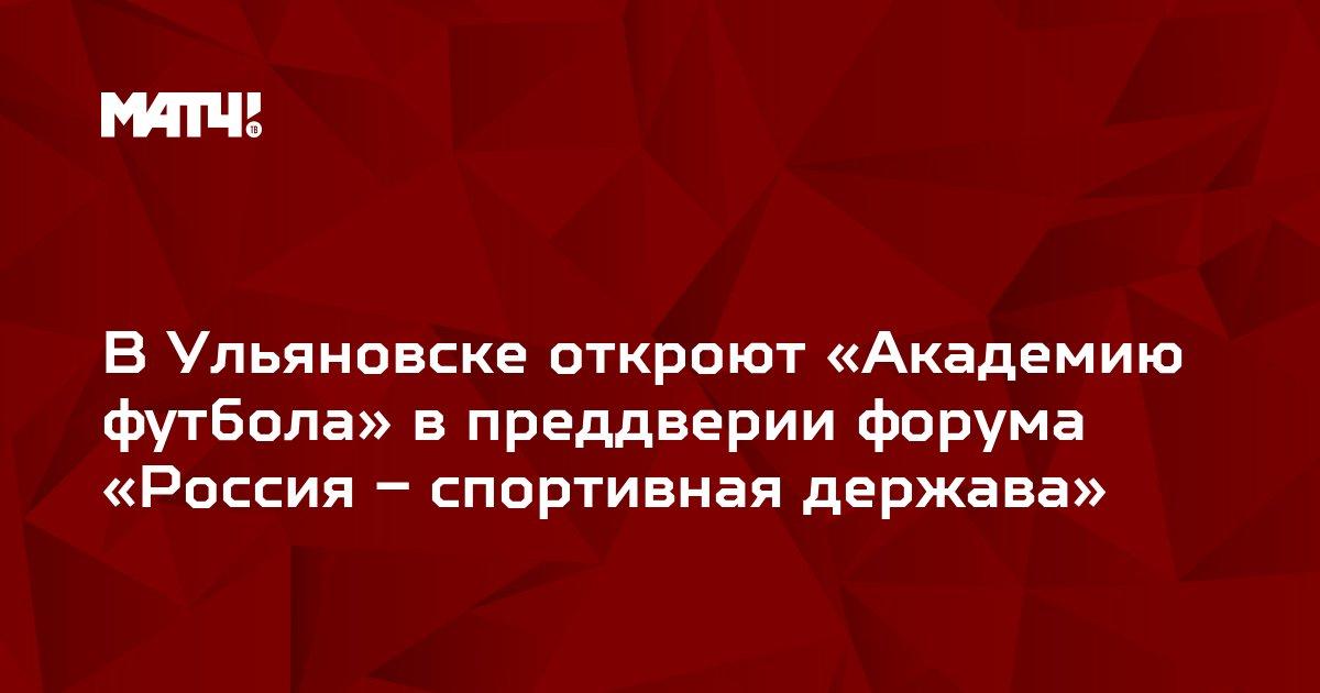 В Ульяновске откроют «Академию футбола» в преддверии форума «Россия – спортивная держава»