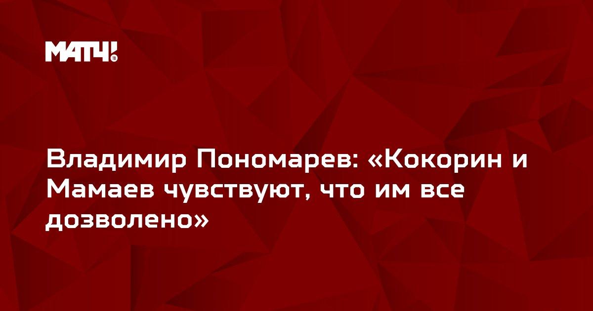 Владимир Пономарев: «Кокорин и Мамаев чувствуют, что им все дозволено»