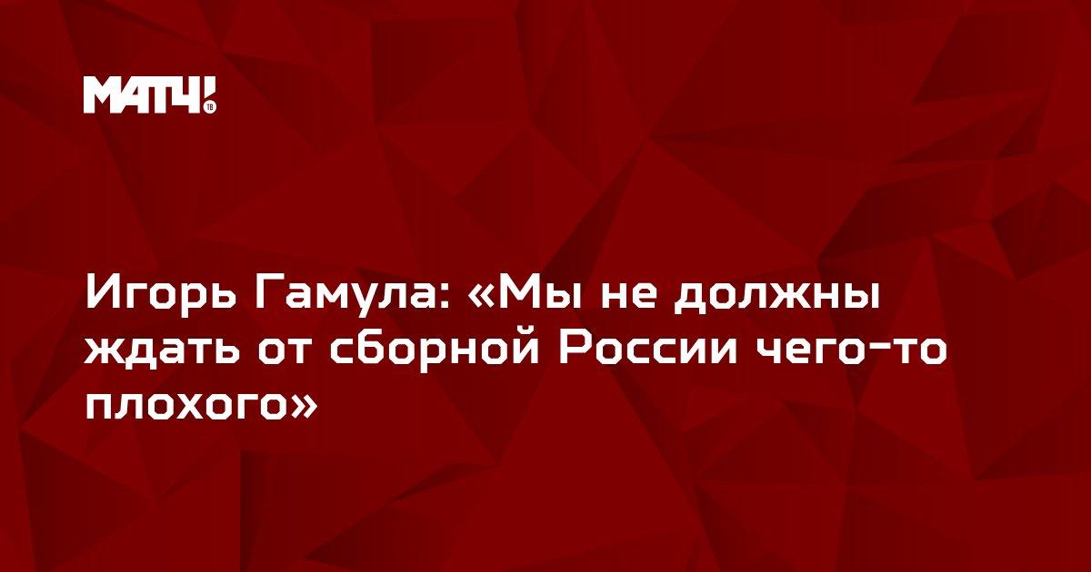 Игорь Гамула: «Мы не должны ждать от сборной России чего-то плохого»