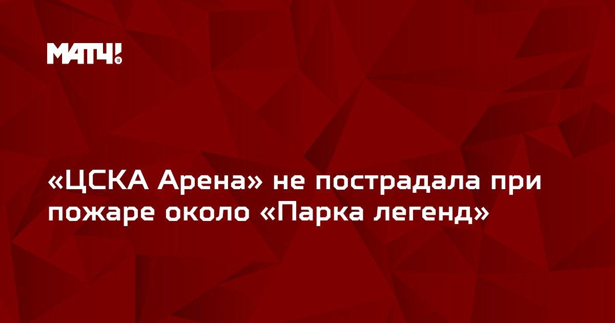 «ЦСКА Арена» не пострадала при пожаре около «Парка легенд»