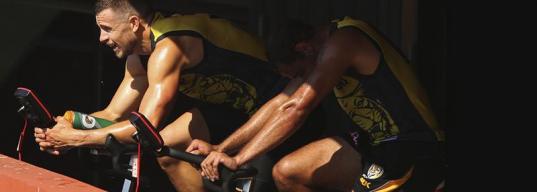 Какие упражнения самые безопасные для коленей?