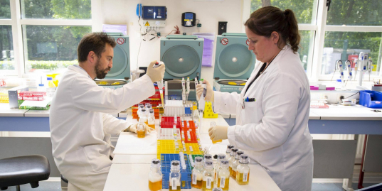 Как меняется Всемирная антидопинговая система? Объясняет Александр Жуков