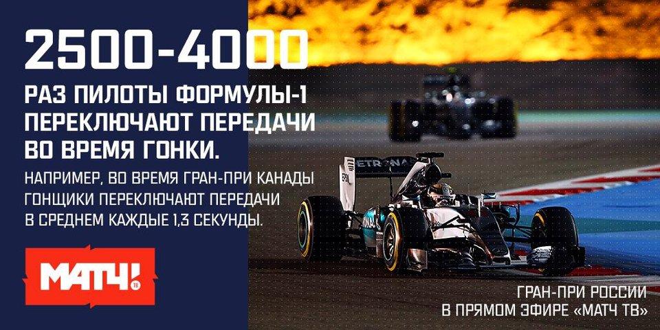 До Гран-при Сочи осталось 3 дня