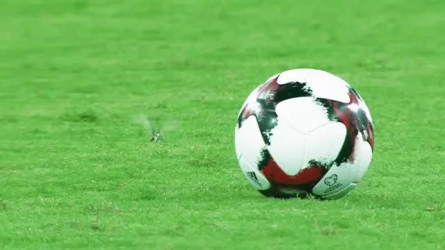 Стали известны стартовые составы «Крыльев Советов» и «Краснодара» на матч Кубка России