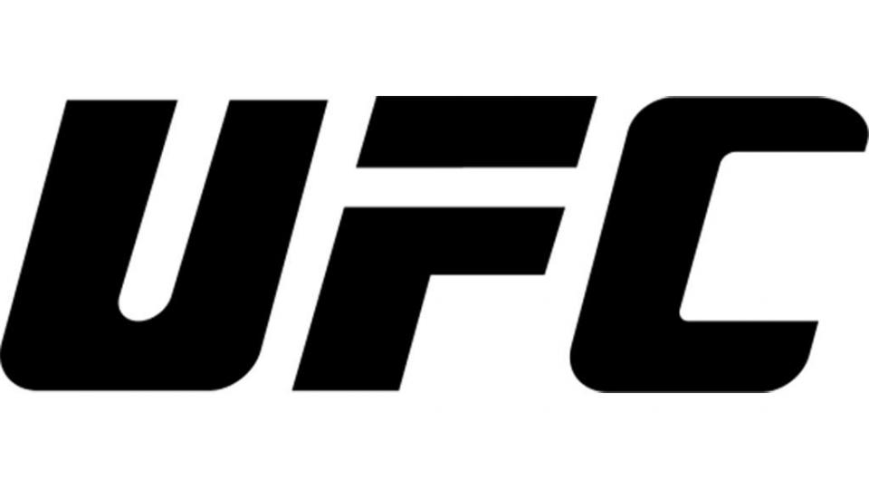 Таджикский боец не выступит на турнире UFC в России из-за проблем с документами
