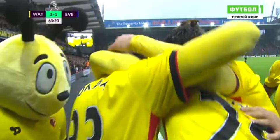 Шершень Харри празднует гол с игроками «Уотфорда»