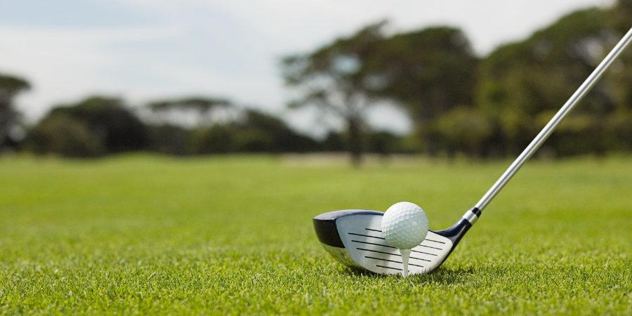 Организатор: «Втурнире покерлингольфу 26 июля примут участие как гольфисты-любители, так ипрофессионалы»