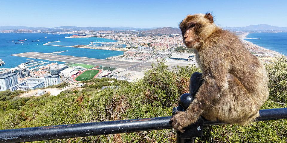 Лихтенштейн, Мальта или Гибралтар? Футбольно-географический тест «Матч ТВ» о карликах