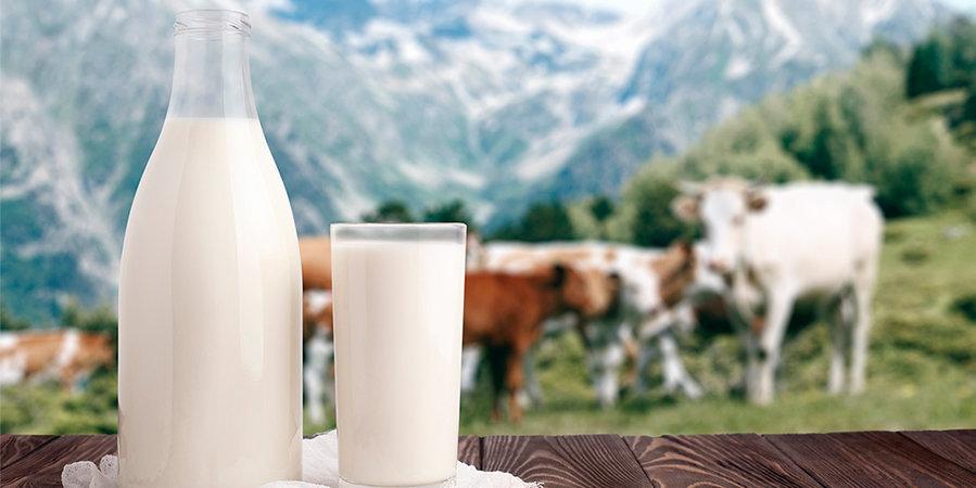 Мельдоний может содержаться даже в молоке. Это доказал Тимофей Соболевский, сбежавший вместе с Родченковым в США