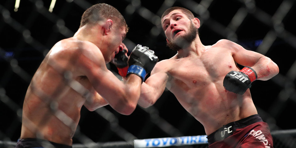 Хабиб – чемпион UFC. Три коротких подробности