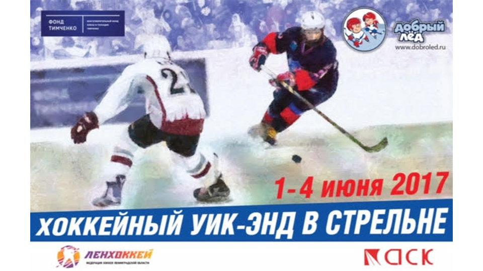 В Санкт-Петербурге пройдет детский хоккейный турнир при поддерджке Фонда Тимченко