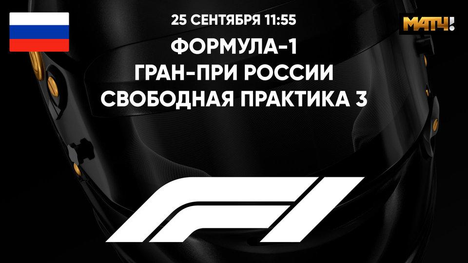 Гран-при России. Свободная практика 3