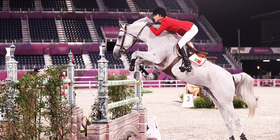 Борцы за права животных призывают МОК исключить конный спорт из программы Олимпийских игр