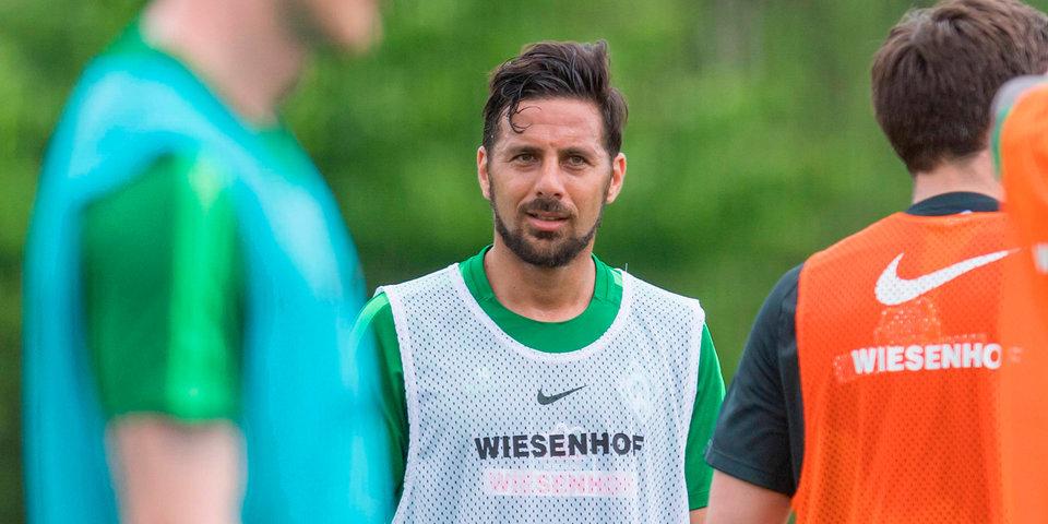 «Вердер» решил не продлевать контракт с 38-летним Писарро