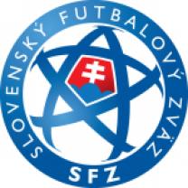 Словакия (U-17)