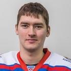 Стрельцов Василий Витальевич
