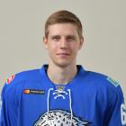 Гурков Дмитрий