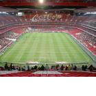 Стадион Да Луж (Бенфика)